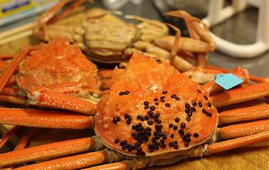 Đã tới Nhật mà bỏ qua những món hải sản ngon thế này thì thà ở nhà còn hơn